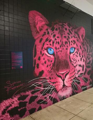 Pink Leopard Mural - Sabrina Rupprecht - 4