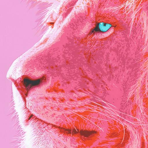 pink-lion-1-pink-safari-sabrina-rupprech