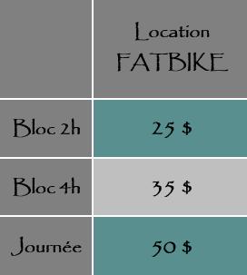 fatbike web.png