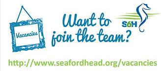 show my homework seaford head