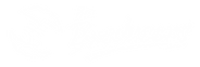 THE BRODUCERS LOGO HOR-16.png