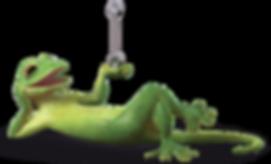 Bridgestone Gecko