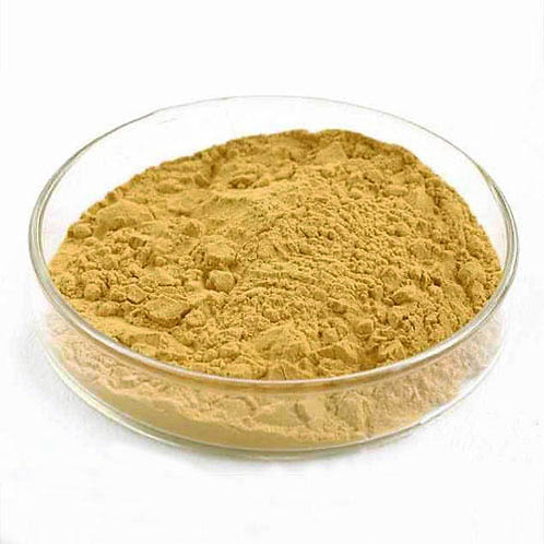 Yellow Tongkat Ali Extract (High Grade) 50gms