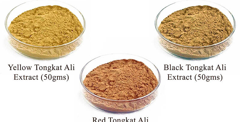 3 Types Tongkat Ali Extract (3 Packs Promo) (Per Pack 50gms)