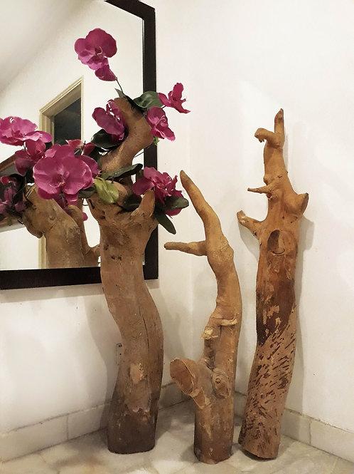 Original Tongkat Ali Wood