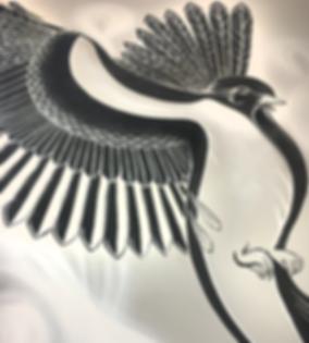 BIRD_DET_1200.png