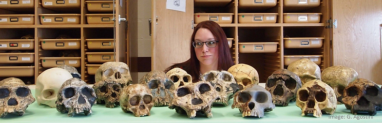 Hominins and me.png