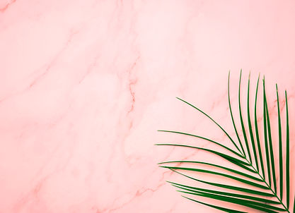 Pink Palm Leaf Marble Background.jpg