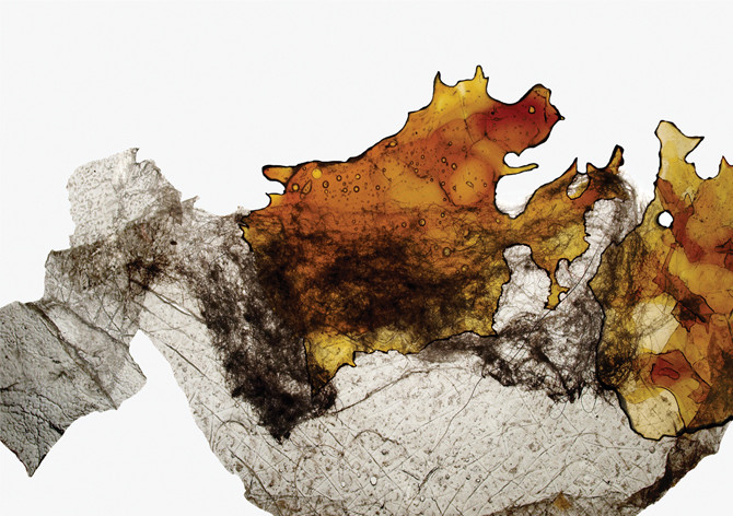 """Figure"", 2009"