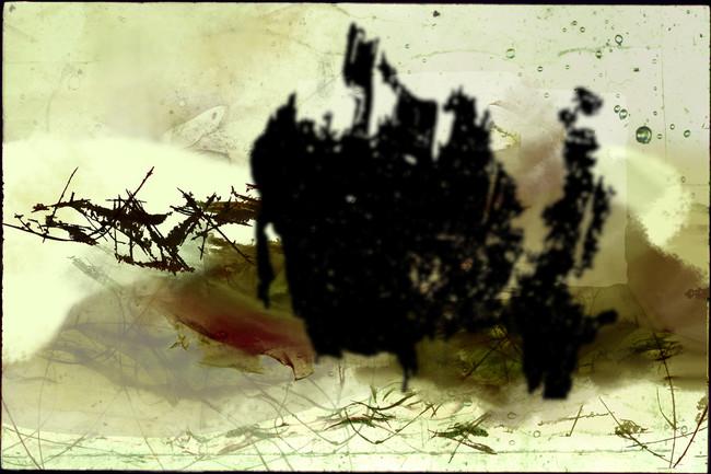 no title, 2002