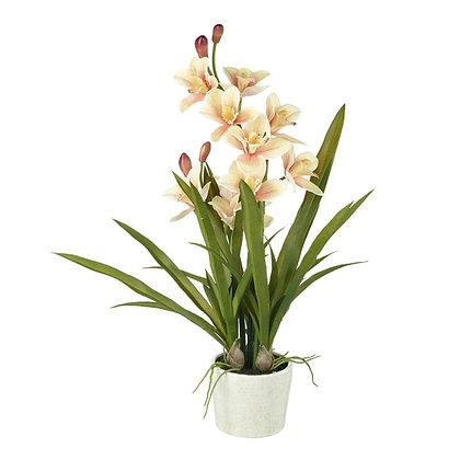 Artificial Peach Orchid Plant in White Glazed Pot