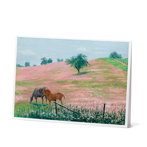 Pasture Paradise Greeting Cards