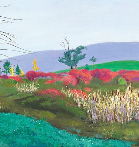 Catskill Bog