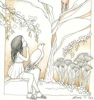 The Saker Falcon