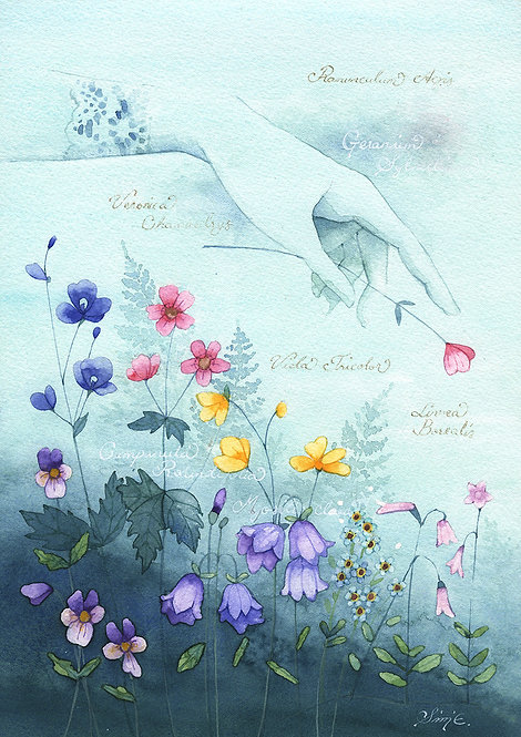 Seven Flowers / Art Print A4