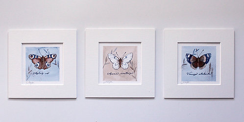 Set of three original butterfly paintings 15x15cm
