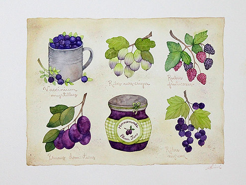 Blue Nordic Berries / Original Painting 38.5x29cm