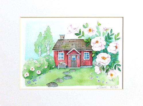 Garden of Midsummer Roses / Limited Edition Print 24x18cm