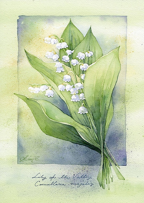 Lily of the Valley / Art Print A4