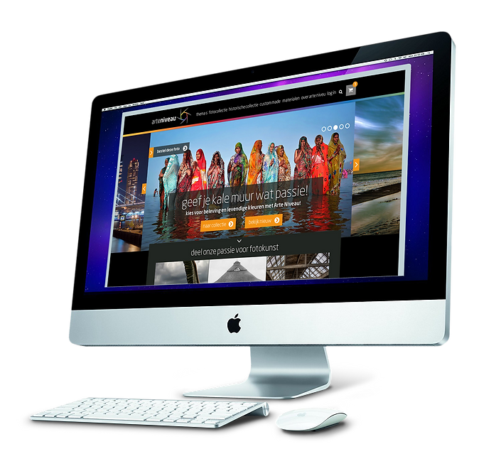 basis website.png