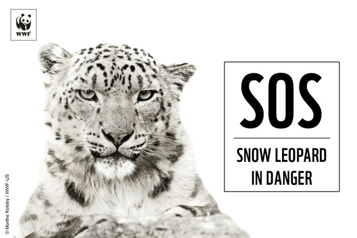 SOS Message by WWF