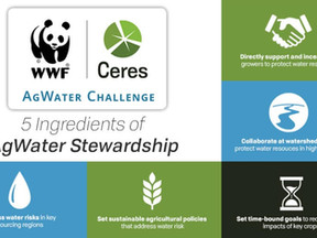 Facts About the Corporate Intervention in Sustainable Agriculture