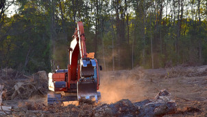 UK's New Law to Stop Illegal Deforestation