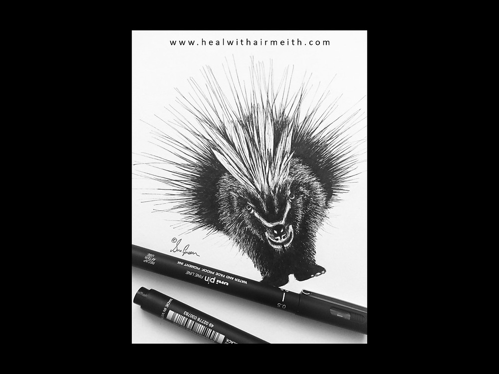 Spirit Animal Porcupine