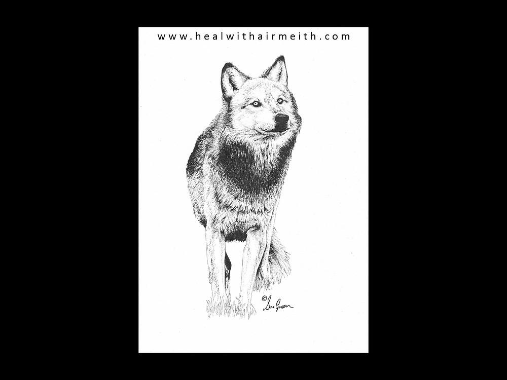 Spirit Animal - Wolf