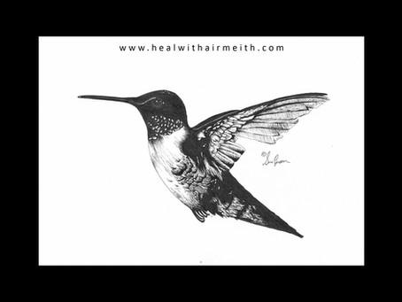 Spirit Animal - Humming Bird
