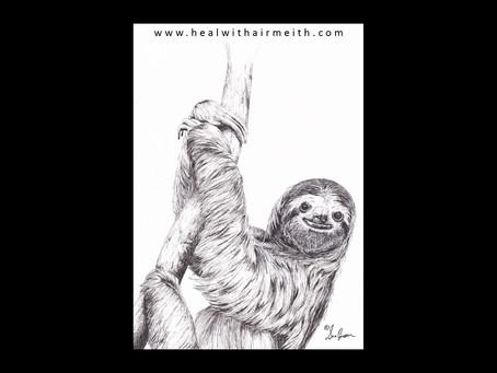 Spirit Animal - Sloth