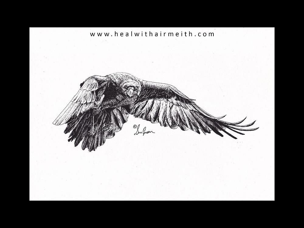 Spirit totem Raven