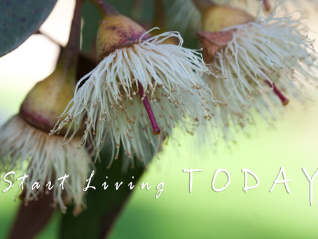 Releasing - start living today!