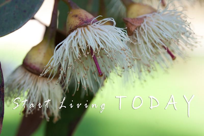 Start living today