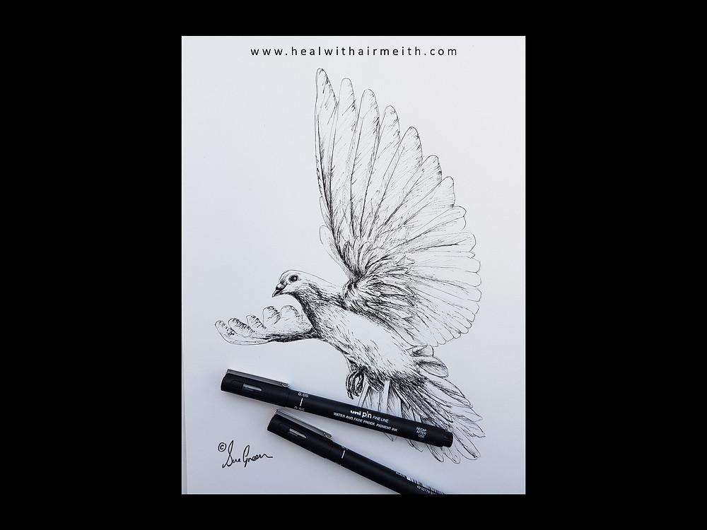 Spirit Animal - Dove