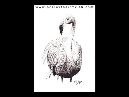 Spirit Animal - Flamingo
