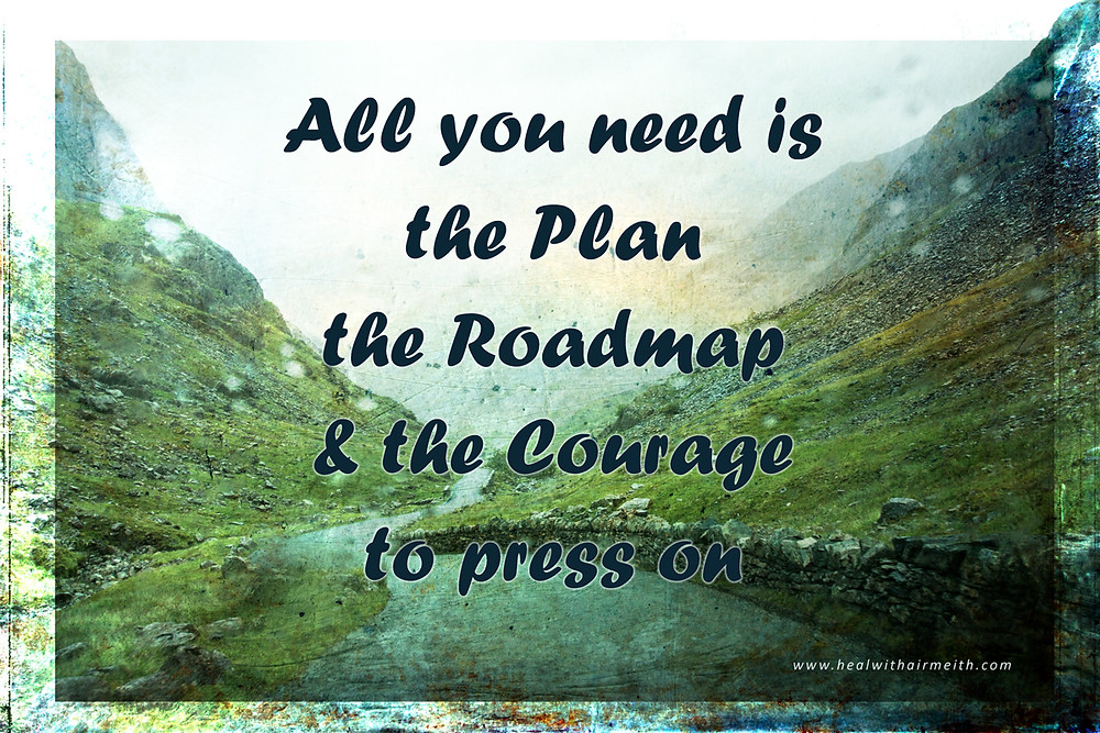 The roadmap to life