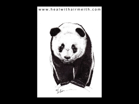 Spirit Animal - Giant Panda
