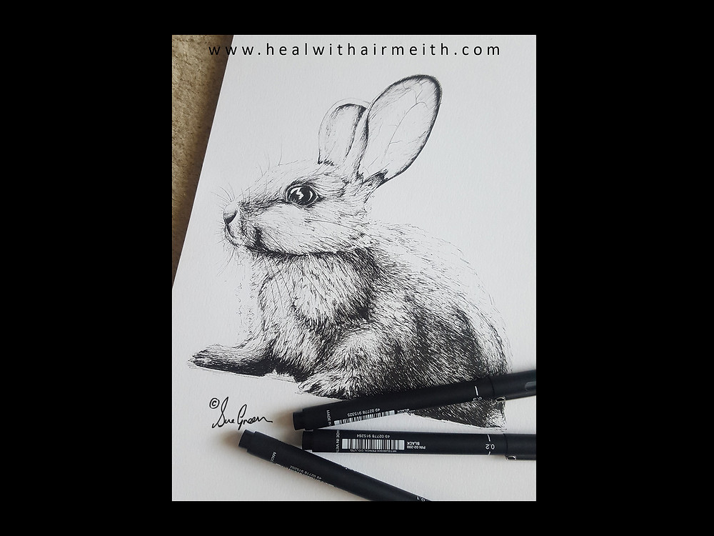 Messenger Animal - Rabbit