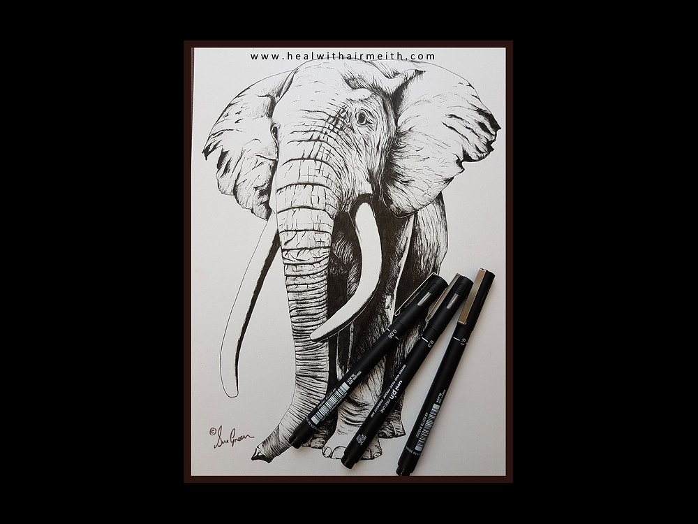 Spirit Animal - Elephant