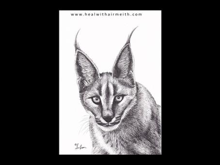 Spirit Animal - Lynx