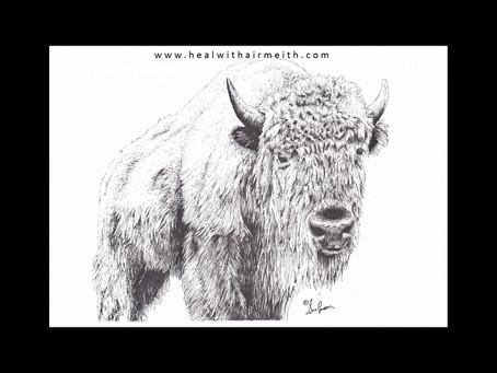 Spirit Animal - White Buffalo