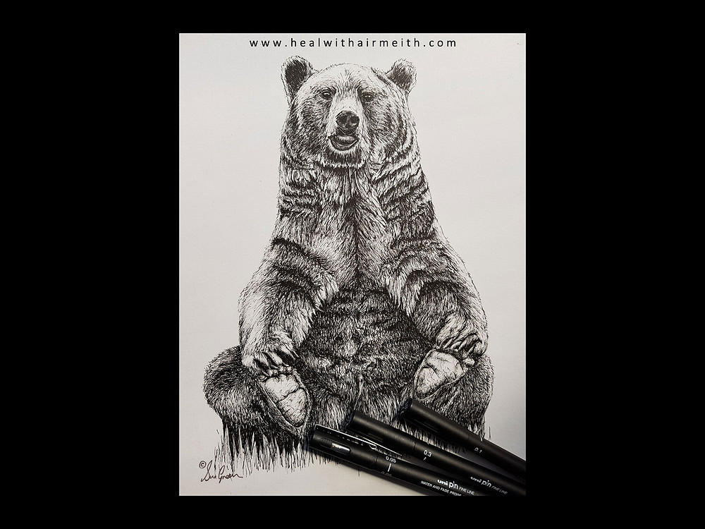 Spirit Animal - Bear