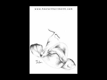 Spirit Animal - Beluga