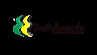 Logo V.A completo.png