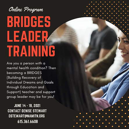 bridges training.png