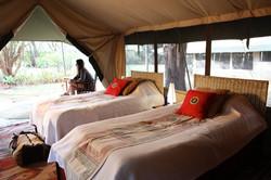 Destro Safaris - Marketing pics