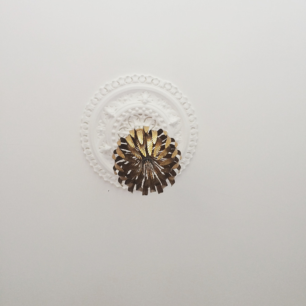 Overhead lighting with a ceiling rose