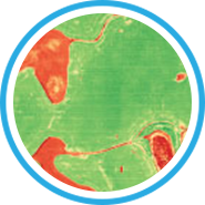 map-icon-4.png