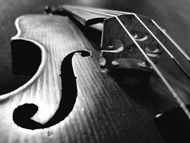 Dark Violin MH.jpg